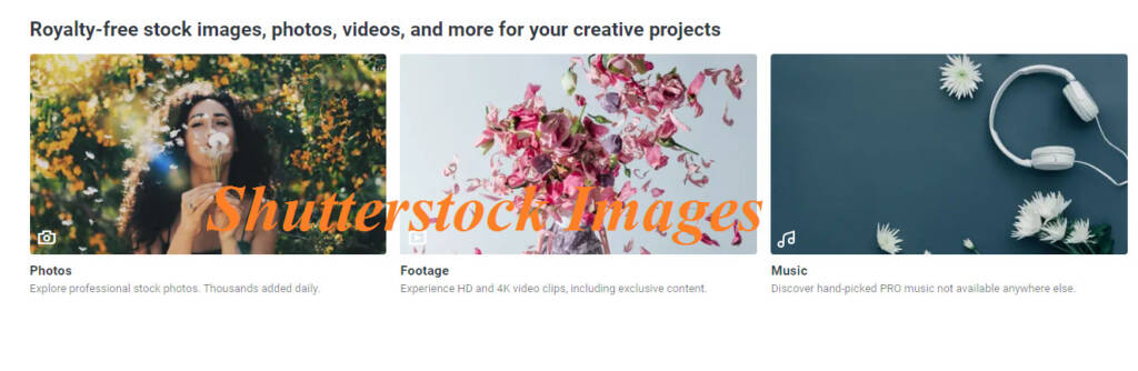 How to Download Shutterstock Images for Free Without Watermark